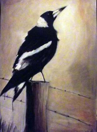 Magpie King