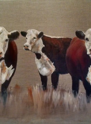 Trio of Herefords