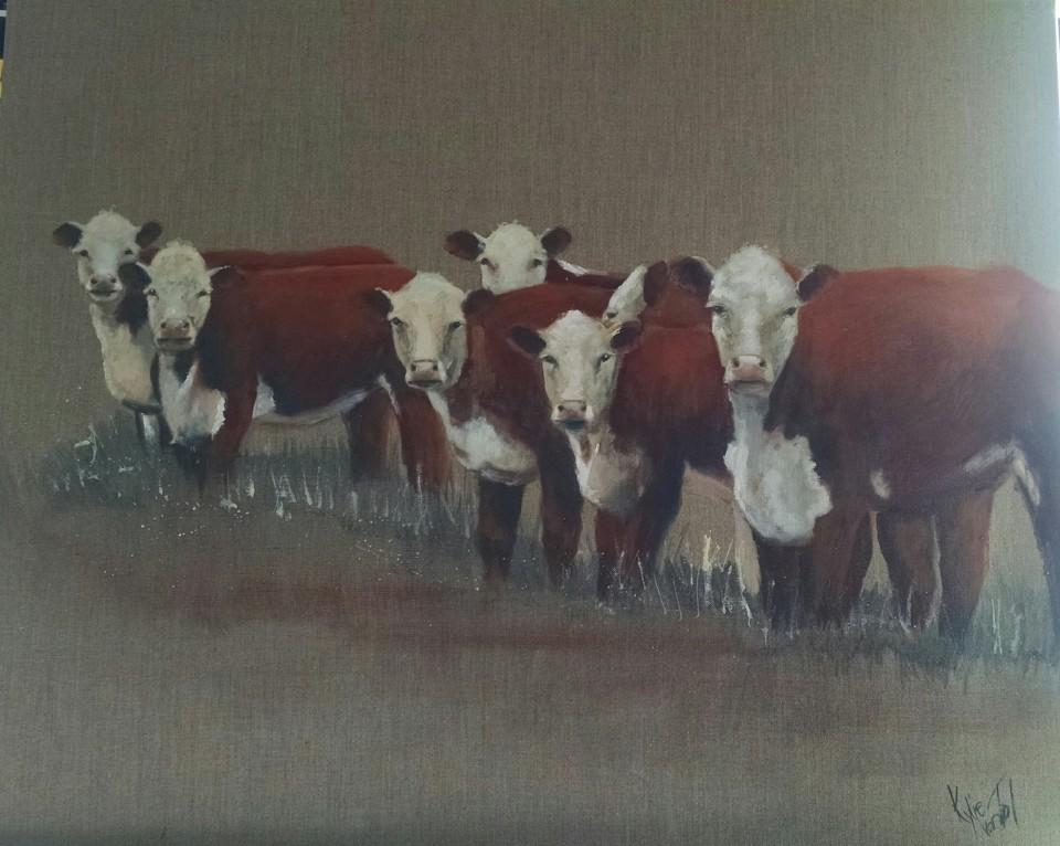 """""""curious cows"""" acrylic on canvas size 60cm x 76cm $520"""